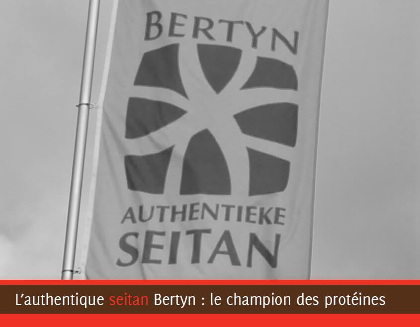 Drapeau Bertyn